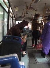 13路公交车漏水都没人管