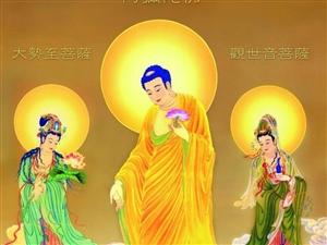 市佛教协会讲经团来香山寺举弘法大会