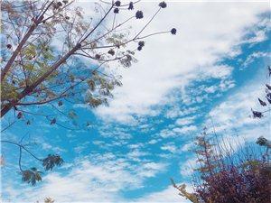 不同的城市,不同的天空,心境�s是一�拥模��p松自在!愿�q月�o好