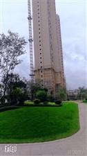 望阳中央公园4室2厅两卫170方84万元