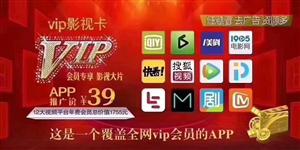 手机VIP影视卡 12大平台 电影电视卫视栏目 一年随便看 批发5元一张 100张起批  零售30元...