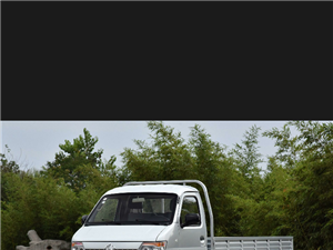 澳门威尼斯人娱乐场网址范围求购小卡车一辆,要求后面是双排轮的,旧些也行,得有手续