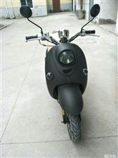 黑色磨砂小龟王,王野125cc发动机,合格证是48cc的,属于轻骑。一时兴起买了,也没怎么开,就几百...