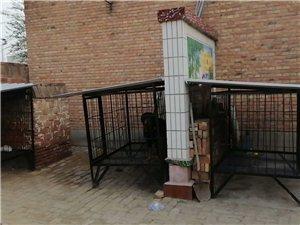 1.5  1.7   的钢筋狗笼子,全新。十月10才装的。  折旧出。 价不高。需要的来。位置广场对...