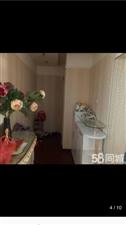 售房:??天怡家园南门口,西关车站向西50米处,四楼邻街面140平米,三室两厅豪华装修,地暖房户型3...