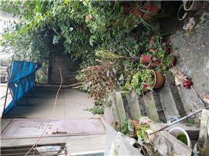 三室两厅一厨一卫,底楼,双证齐,产权面积108平米,外带80平米花园,实得面积近两百平米,仅售22....
