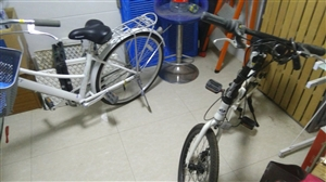大的是捷安特自行车,原价1000多,现在700,小的是奔驰四s店送的300,捷安特买回来,太懒了没有...