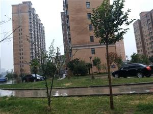 新景家园13号楼6层东单元东户,133个平方米,南北通透,视野开阔,全天阳光,位置最佳,物业楼西侧,...