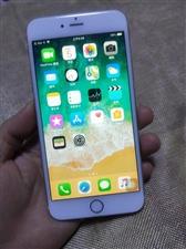 土豪金16G苹果iPhone6Plus,全网通,12的系统,挺流畅!成色非常非常新!9新以上!可以看...