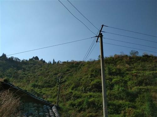 果园转让:果树砍了,2年没管理的果园,全部长草了,有房子5间,三相四线电已经到位,原来种植2200多...