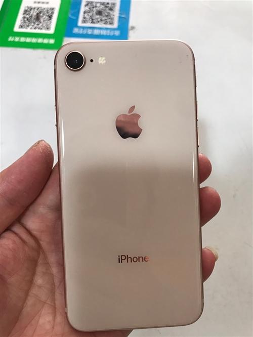 蘋果8  金色  港版  成色9成新