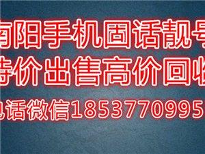 宛城高端手机车牌靓号  13183319999 13037651111 17538247777 ...