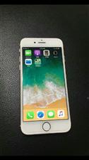 出iPhone8国行 ,价格2950,无拆修无泡水,无任何问题,无磕碰,很新,手感非常好。正常使用。...