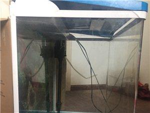 本人有一个鱼缸基本没有使用尺寸600毫米,现280元低价出售,有需要联系电话15339871899