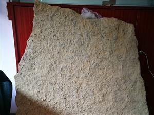 燕子石 非常少见大型燕子石三叶虫化石 80*100cm