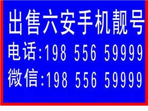 19855659999出售各种六安澳门太阳城官网手机靓号(AAAA    ABCD  1390564 以及各...
