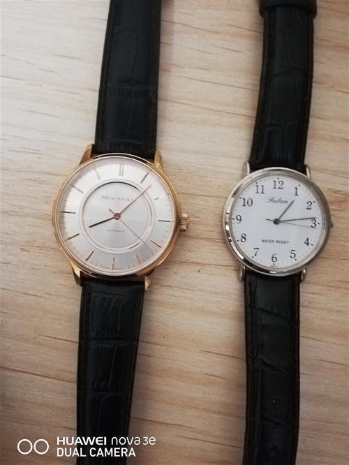 刚买几天的海鸥手表和西铁城猎鹰  玩表 不习惯戴表  两只一起转
