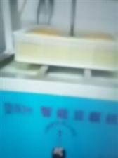 低价出售一个人操作的自动化智能豆腐机,封口机及所有设备原价18888处理价6666