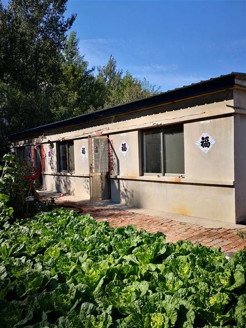 實驗中學對過有一獨門獨院出租,八十多平房子,自燒暖氣,井水菜園,價格低,電話18940508886