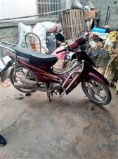摩托车基本没骑!一直在家中放置!需要更换新电瓶!其它毛病没有!非诚勿扰!