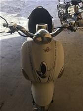 出售大金龟摩托车,原装机子、皮毛好、动力十足、贩子勿扰。