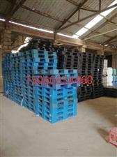 出售回收二手木托盘,塑料托盘铁托盘,吨桶铁桶塑料桶量大价优,
