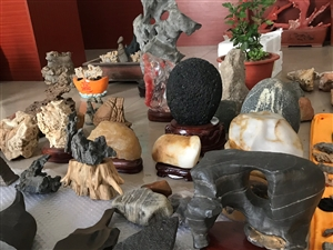 处理各种精品收藏奇石、电话139 6366 8355