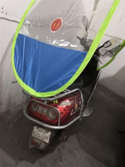 出售一个电动车 新换的电池 72v能跑60多公里上抖坡两个人完全没问题 有充电器有牌照有车锁有防雨罩...