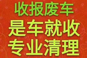 @ 最高价收车 回收正规  带户 过户 脱审 报废 火烧 事故 轿车 货车~客车~三轮与车有关一切车...