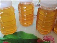 自家产的土蜂蜜洋槐蜜,有需要的联系我