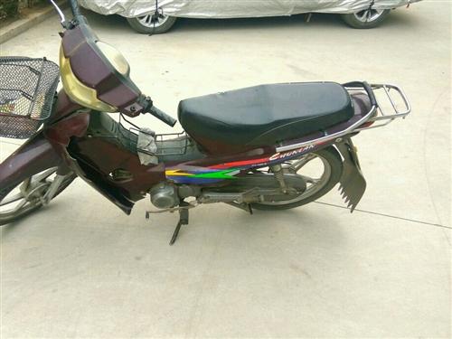摩托车低价处理,能看车的请电话联系,价格小议。