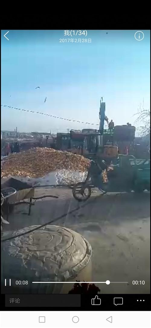 铲车和三米拖粒机现在干活的机械