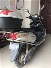 雅迪电动自行车60V,购买日期和价格看发票吧,因本人要离岛低价转让,有意者请联系!