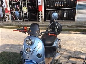 金沙国际网上娱乐爱玛电动车一辆,6个大电池,72v爬坡很有力,车子8-9新!非诚勿扰!