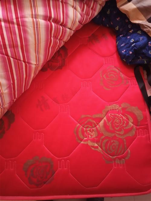 1.8*2.2冬夏两用床垫子南环