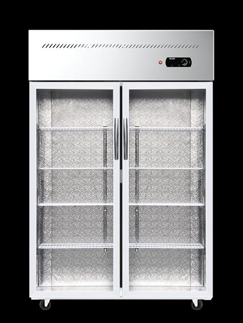 九成新雙開門冷藏柜