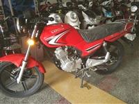 重庆牌摩托车CQ125-28H(龙驹) 重庆牌摩托车CQ125-28H(龙驹)【建设】  发动机...