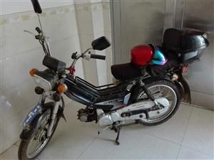 出售一辆嘉鹏牌JP48Q型两轮轻便摩托车,在那大四中,由于我要换车,车没毛病,有意者请联系