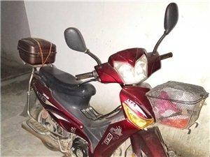 闲置二手摩托车,跑了不到5千公里, 有需要的联系我吧。18137730313  张女士