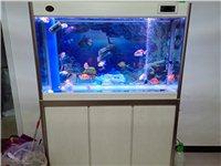 二手魚缸出售,1米2帶全套設備和魚,有意者聯系,不管送自己搬