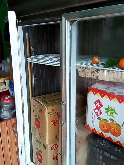 1000升冰柜,正常使用,剛換銅管,聲音很靜,檔口轉型,所以賣掉,有需要的老板快點過來拿,過幾天就賣...