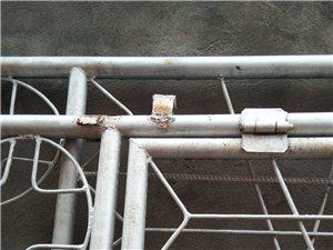 老式铁门,2扇,宽3米六,高2米3左右,需要联系