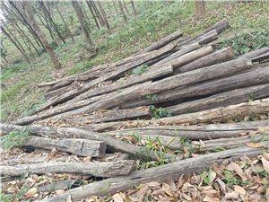 长期收购:废弃模板,顶木 横条 格子板  木料家具  等干木料,联系13976404607