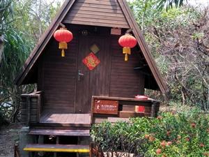 假山,仿木,微型景观,幼儿园设计施工,园林绿化景观设计施工!13036065345海南省东方现场加工
