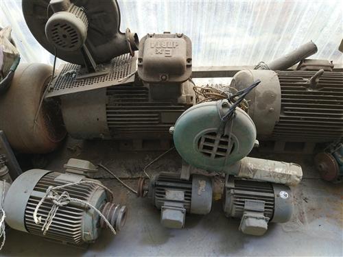 山东潍坊青州处理电机,螺杆泵,起动柜……等多种电器