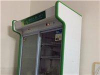 二手展示柜 冷凍冷藏 還有煤氣煮面機 冰柜 蒸籠里出售