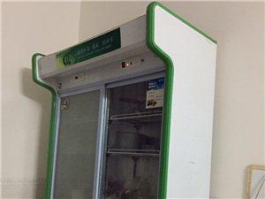 一米二展示柜 冷冻冷藏 还有煤气煮面机 冰柜出售