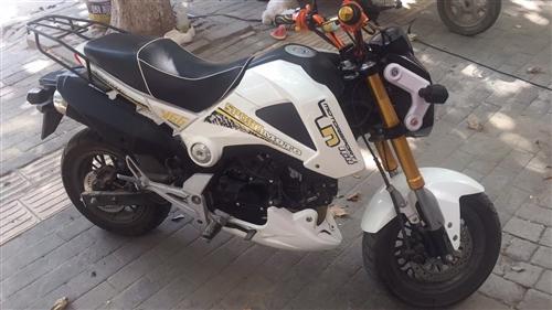 小猴子摩托車,跑了一千兩百多公里,剛做的保養,新換的火花塞和電瓶,無事故,無磕碰。新買了汽車閑置了,...