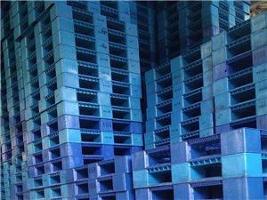 福建�L期大量回收出售二手塑料托�P,�F托�P,木托�P量大�r��, 福建�L期大量回收出售二手塑料托�P,�F托�P...