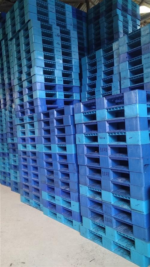 福建長期大量回收出售二手塑料托盤,鐵托盤,木托盤量大價優, 福建長期大量回收出售二手塑料托盤,鐵托盤...